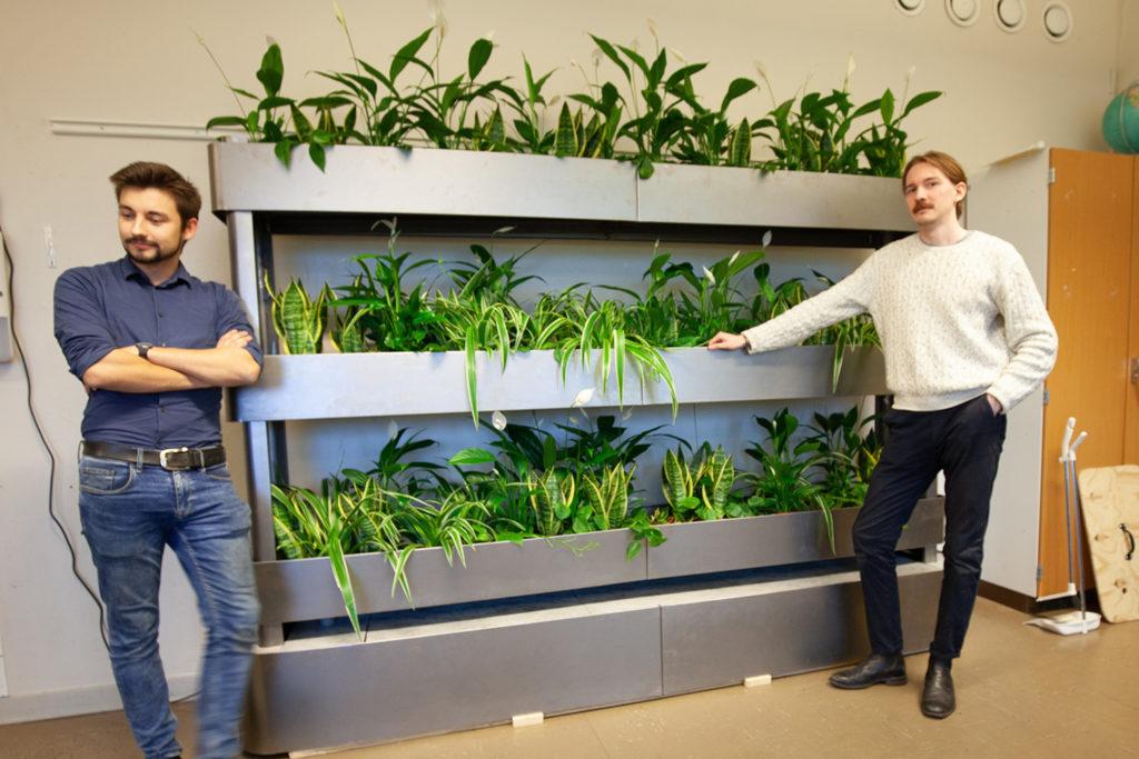 En växtställning med gröna växter i tre rader på höjden. Två killar står på varsin sida av växtställningen.